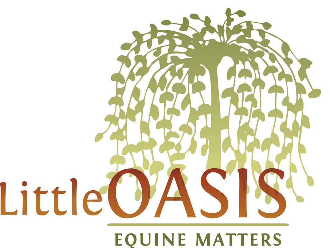 Little Oasis Store