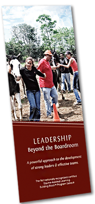 Equine-Assisted Learning Leadership beyond the boardroom brochure
