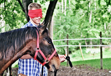 equine-assisted-learning-youth-programs