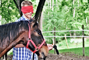 Youth Equine-Asssted Programs Donations
